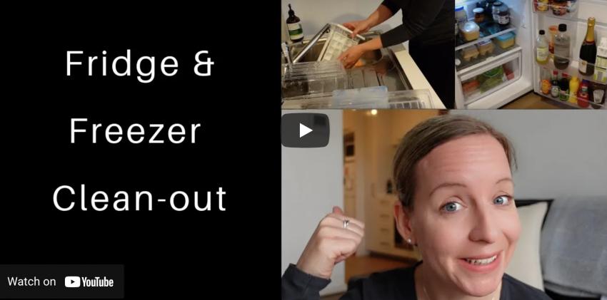 fridge and freezer cleanout